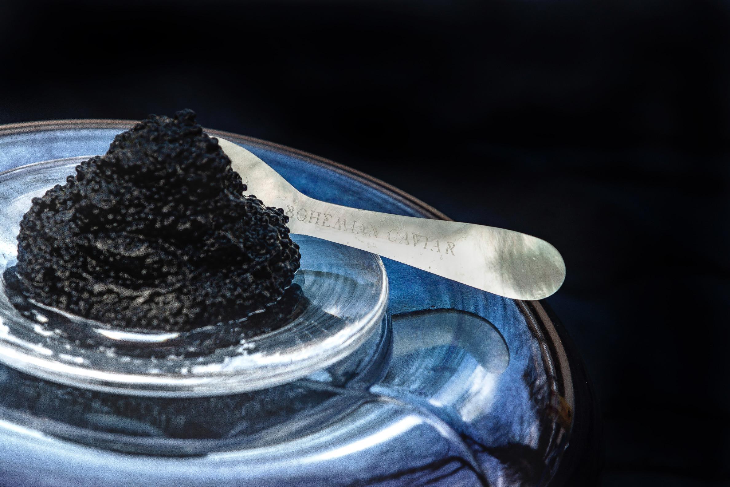 Zoom sur Bohemian Caviar et Datcha
