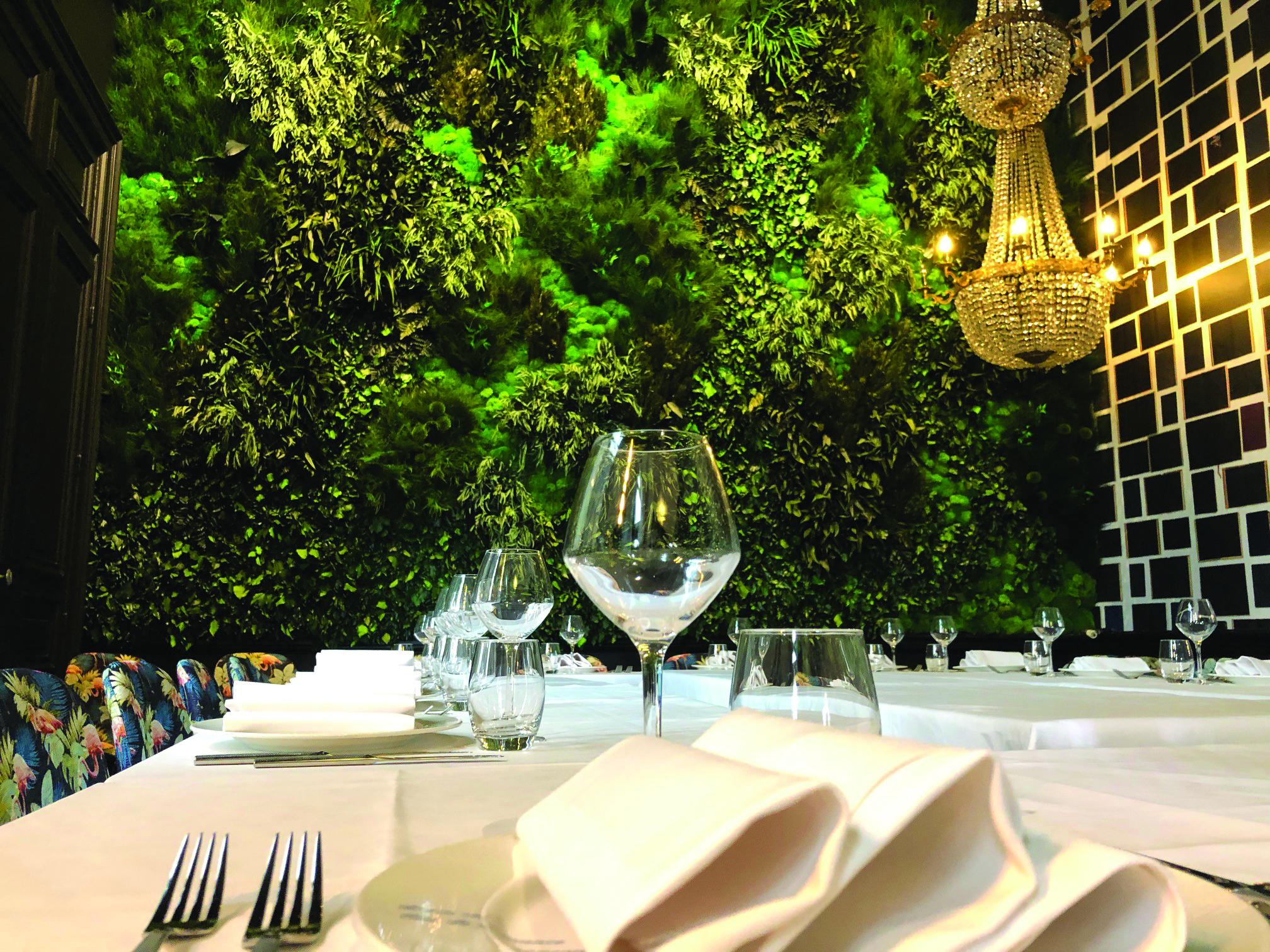 Green Spirit : Se reconnecter à la nature avec un mur végétal