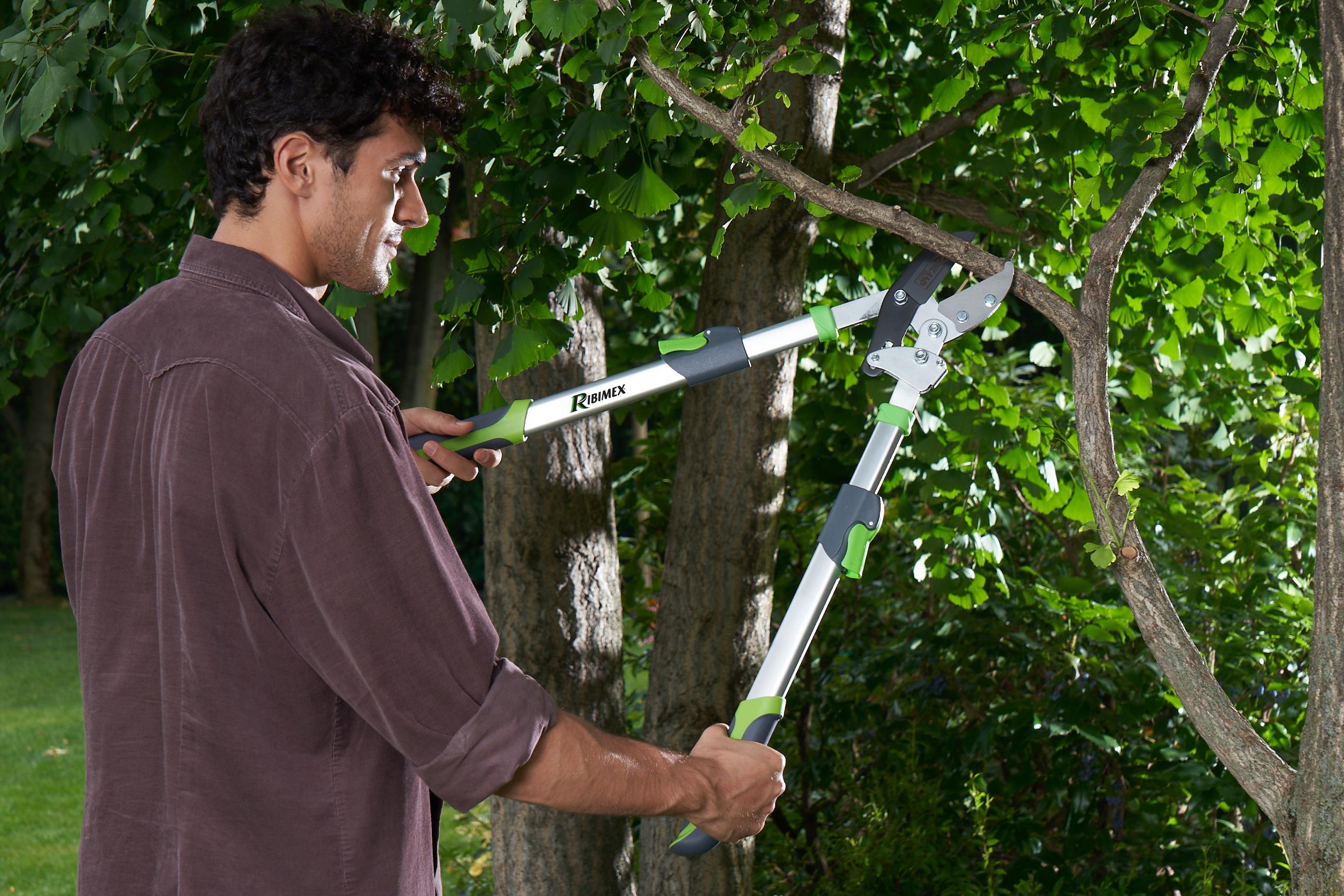 Ribimex : Les bons outils pour les travaux d'automne au jardin