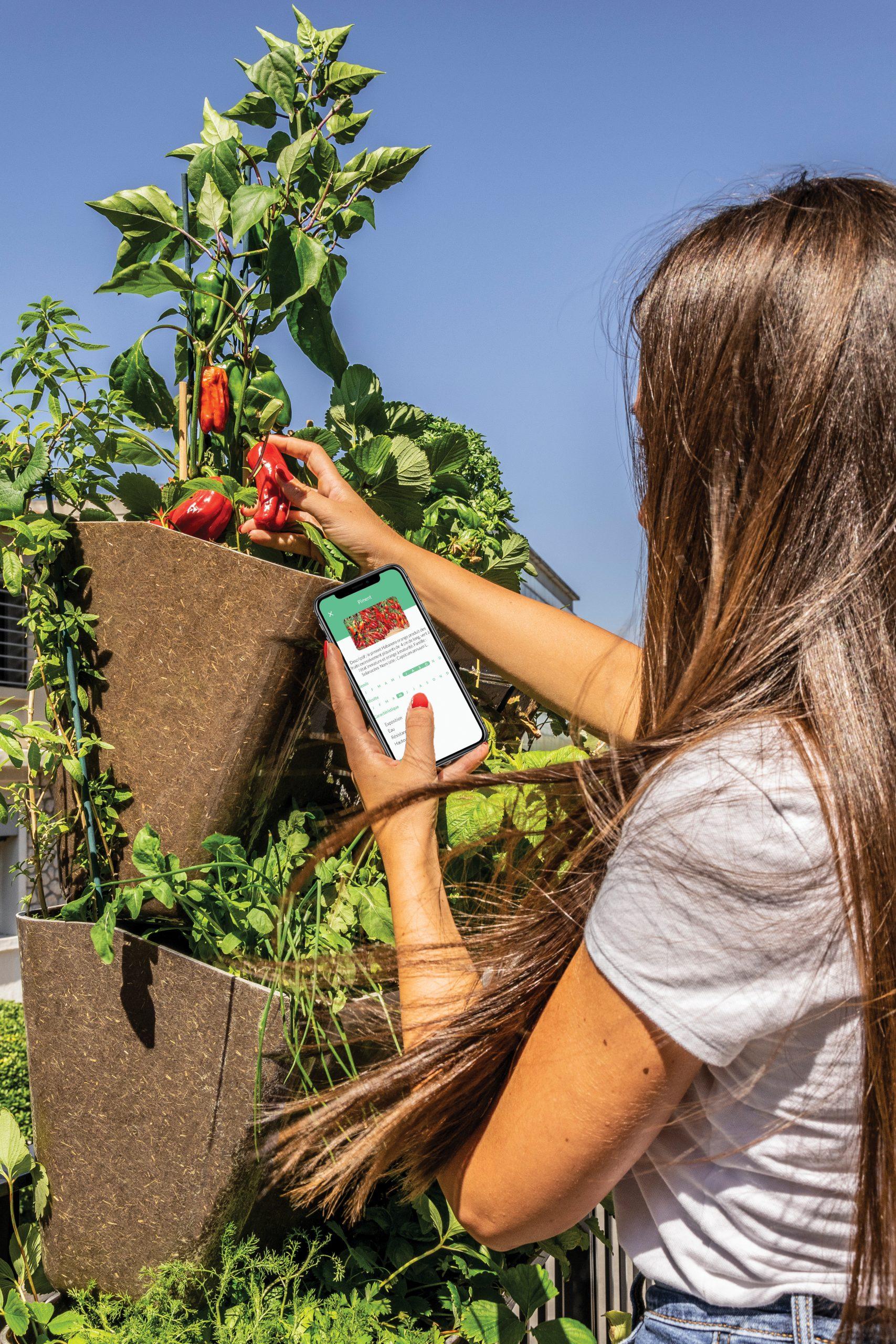 AGROVE : L'application qui vous accompagne au potager